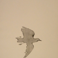 Prelude to 1,000 Contemporary Objects of our Time #1b&lt;br /&gt;<br /> &amp;quot;Blackbird I&amp;quot;